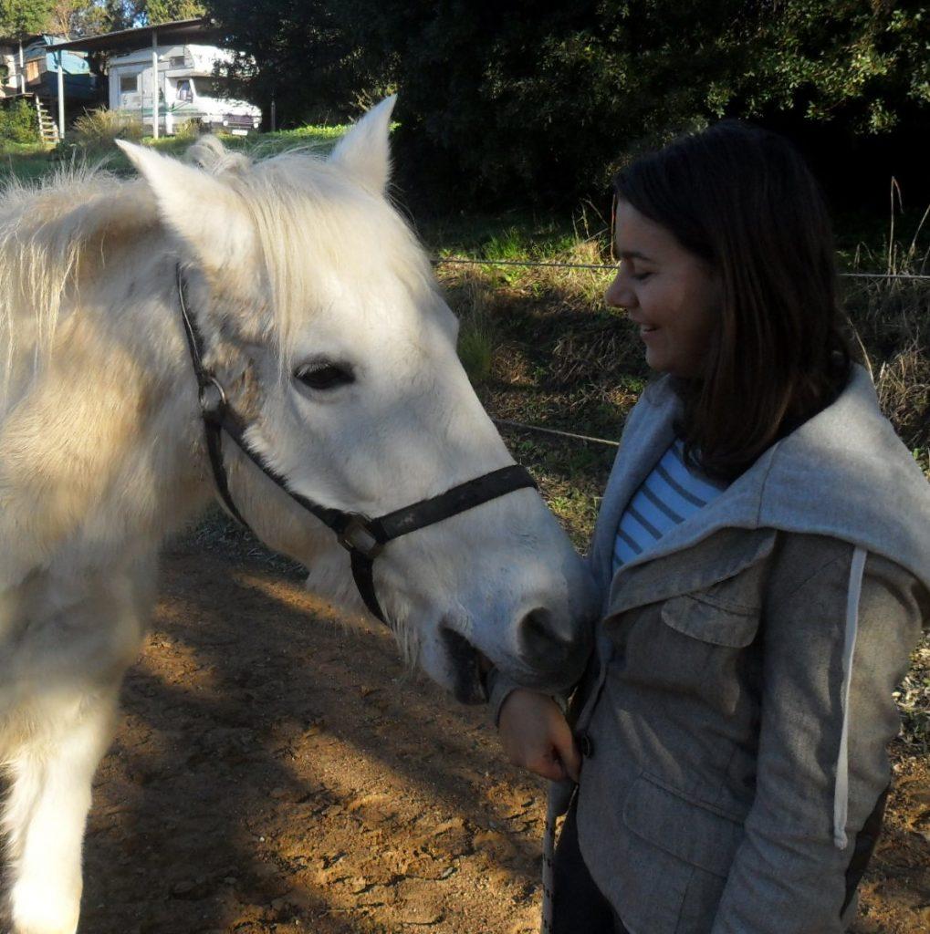 enger Kontakt zum Pferd bei allen unseren Angeboten