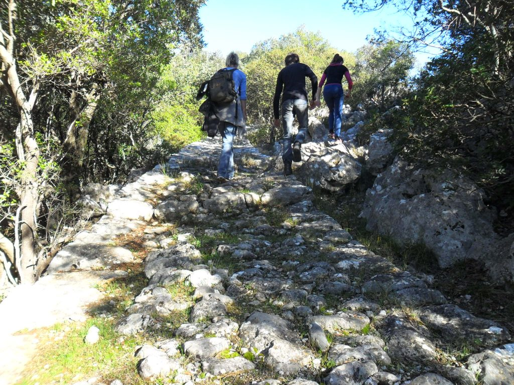 Attractions Nearby Ancient Road Kalamata - Sparta